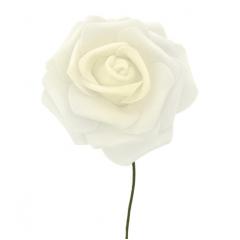 Rosa De Eva Marfim