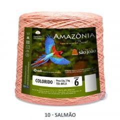 Barbante São João Amazônia 10 Salmão Nº 6 2kg