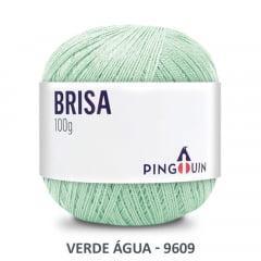 Linha Brisa 9609 Verde Água 100 Gr