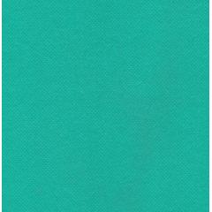 Tnt  Verde Tiffany 085  Gramatura 40