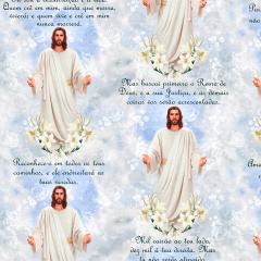 Tecido Tricoline Digital Jesus Ref 9000